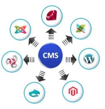 CMS.Development