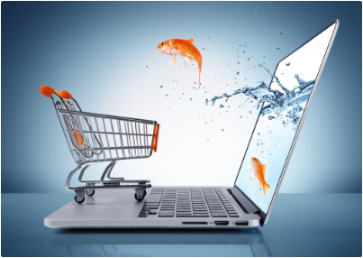 SWS eCommerce Solutions1
